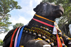 The Nandi bull on Chamundi Hill, Mysore, India Royalty Free Stock Photo