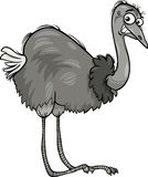 Nandu ostrich bird cartoon illustration Stock Photography
