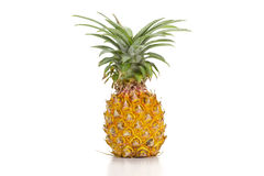 Nang Lae Pineapple Stock Photo