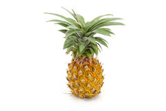 Nang Lae Pineapple Stock Photos