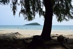 nang plażowy baran Fotografia Stock