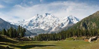 Nanga Parbat和神仙的草甸全景,喜马拉雅山,巴基斯坦 库存图片