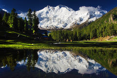 Nanga Parbat and Fairy Meadows Royalty Free Stock Photography
