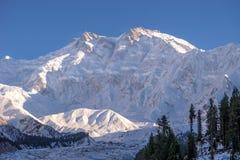 Nanga Parbat met wit omhoog sneeuw en avondzonlicht wordt behandeld dat stock foto's