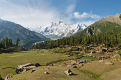 Nanga Parbat und feenhafte Wiesen lizenzfreie stockbilder