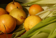 Nanguo Pear Stock Images