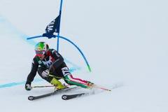 NANI Roberto (ITA). Alta Badia, ITALY 22 December 2013. NANI Roberto (ITA) competing in the Audi FIS Alpine Skiing World Cup MEN'S GIANT SLALOM Stock Photography