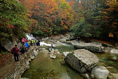 Nanjiang China-A stroom in Guangwu moutain in de herfst stock afbeelding