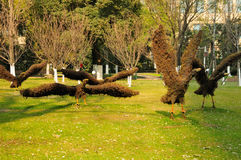 Nanjing China Topiaries. Flying bird topiaries at a small park in the city of nanjing china in jiangsu province in winter Stock Image