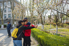 Nanjing Forestry University campus. Nanjing Forestry University is a combination of forestry, forestry, agriculture, animal husbandry, fishing and other Royalty Free Stock Images
