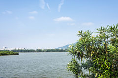 Nanjing international exhibition center and Xuanwu lake Stock Image