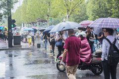 A rain in the morning, people going to work crossed the intersection with an umbrella