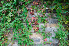 Nanjing Ming Dynasty city wall Stock Photo