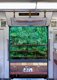 Nankai Koya Line in Wakayama, Japan. WAKAYAMA, JAPAN - OCTOBER 29:  Nankai Koya Line in Wakayama, Japan on October 29, 2014. A limited express train travel to Royalty Free Stock Photo