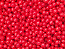 Nanking Cherry Fruits Background Royalty-vrije Stock Afbeeldingen