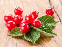 Nanking or felted cherry ftuits with leaves. Royalty Free Stock Image