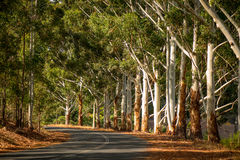 Nannup Country Town in Western Australia stock photos