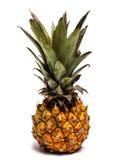 Nano ананас на белизне Стоковое Изображение