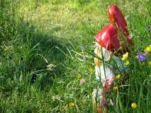 Nano del giardino fotografie stock libere da diritti