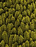 Nanostructures metálicos imagens de stock