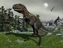 Nanotyrannus dinosaur - 3D render Royalty Free Stock Photography