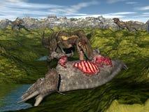 Nanotyrannus eating triceratops dinosaur - 3D Royalty Free Stock Photos
