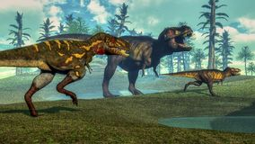 Nanotyrannus hunting small tyrannosaurus - 3D Stock Photo