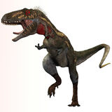 Nanotyrannus Profile Stock Photos