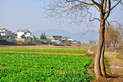 Nanping Village Stock Image