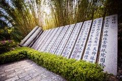 Nanshan Stock Afbeelding
