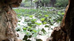 Nanshan City in China stock video footage