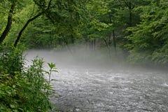 Nantahala-Fluss-Nebel Lizenzfreie Stockbilder