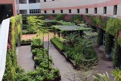 Nanyang polyteknisk högskola, Singapore 02 Royaltyfri Foto