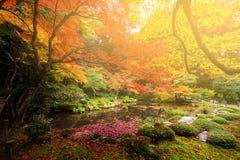 Nanzen-ji at autumn , Kyoto. Autumn garden against sunset light at Nanzen-ji temple, Kyoto, Japan Stock Photography
