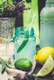 Napój natchnący z cytryną i mędrzec fotografia stock