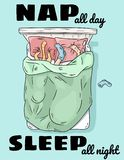 Nap all day sleep all night. Person sleeping in bed with cat. Legs on the pillow funny scene. Top view. Cartoon style image. Nap all day sleep all night. Person stock illustration