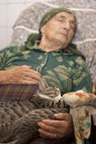 Nap with cats Royalty Free Stock Photo