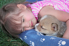 Nap Time Royalty Free Stock Photography