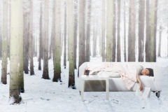 Nap in winter forest Royalty Free Stock Photos
