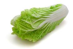 Napa cabbage. Fresh napa (chinese) cabbage isolated on white royalty free stock image