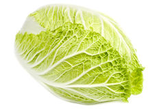 Napa Cabbage. Isolated on white stock photo