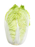 Napa Cabbage Royalty Free Stock Image
