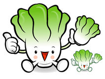 Napa cabbage characters to promote Vegetable selling. Vegetable Royalty Free Stock Photography