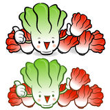 Napa cabbage characters Royalty Free Stock Photography