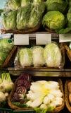 Napa cabbage on counter at market. Fresh Napa cabbage on counter at market royalty free stock photos