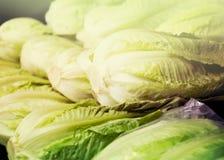 Napa cabbage on counter at market. Fresh Napa cabbage on counter at market royalty free stock image