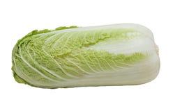 Napa cabbage, isolated on white. Napa cabbage, isolated on the white background royalty free stock photos