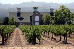 Napa Valley Stock Image