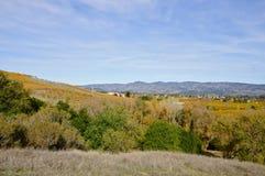 Napa Valley i höst arkivfoton