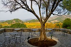 Napa Valley no outono no por do sol fotos de stock royalty free